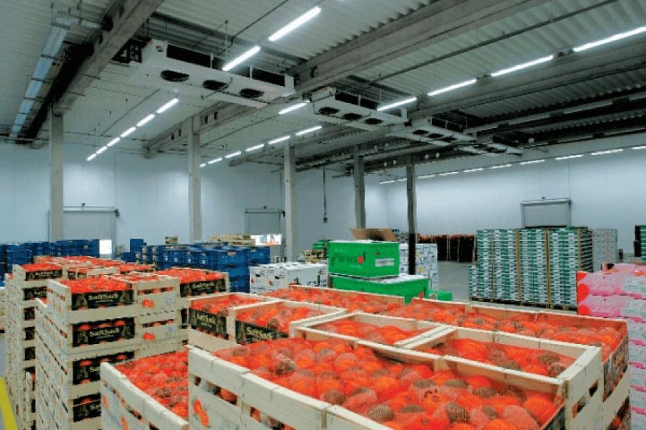 Валидация термокартирование низкотемпературных камер на складе